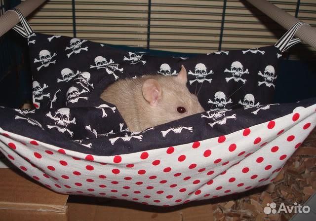 Как сделать гамак для свинки