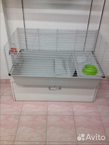 Клетка для шиншиллы - купить, продать или - Avito ru