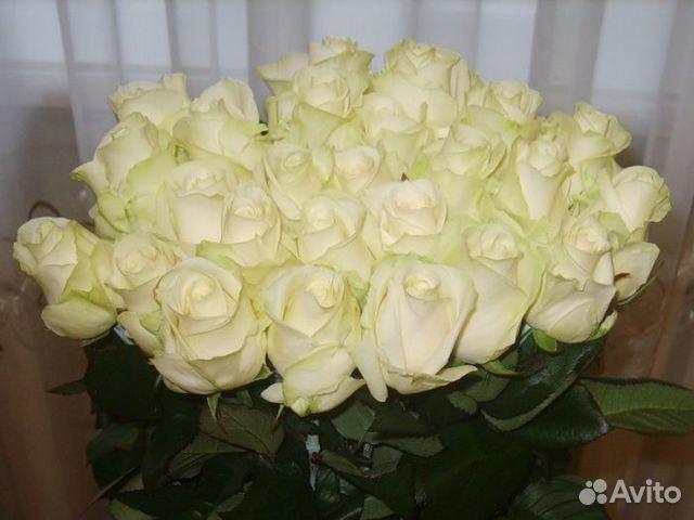 Купить розы подмосковье подскажите где в красноярске можно заказать оригинальный букет