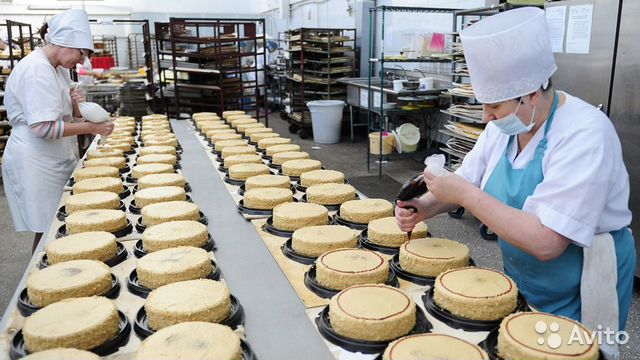 89220004530 Кондитерский цех по производству печенья и кексов