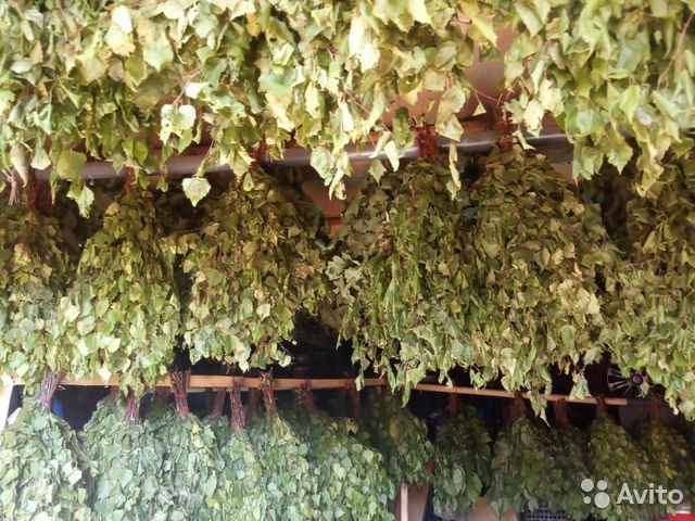 Веник дубовые, липовые, березовые с травами  89501639171 купить 1