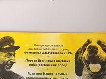Приглашение на выставку собак